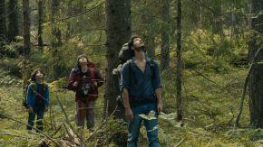 La forêt suédoise au coeur du nouveau film de Gilles Marchand, « Dans la forêt»